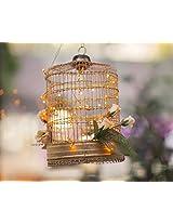 Fulcrum Cage Lights - Flower