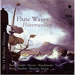 Flute Waves