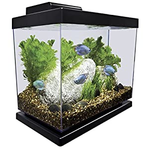 Marineland Classic Aquarium Kit, 4-Gallon