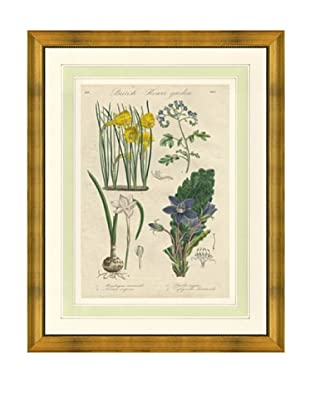 1837 Antique Hand Colored Yellow Botanical Print VIII, French Mat