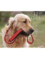 12 Uses for a Golden 2009 Calendar