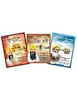Frankfinn Shabad Gurbani - Pack of 3 Audio CDs (Bighan Na Kou Laagta - Babiha - Maer Karo) (Punjabi Devotinal)