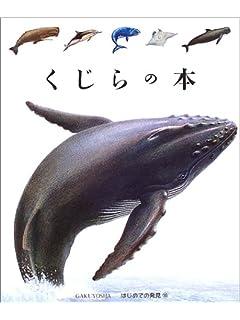 2本に分かれる潮吹きをするのは何クジラ?