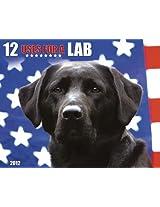 12 Uses for a Lab 2012 Calendar