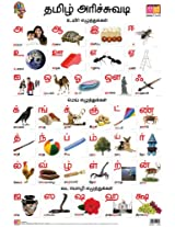 Tamil Alphabet (Front & Back) (Educational Wall Charts)