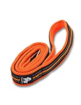 PetsUp Premium Padded 3M Reflective Outdoor Adventure Dog Leash Best Match With Front Range No-Pull Dog Harness and Vest Harness