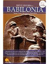 Breve Historia de Babilonia / A Brief History of Babylon (Breve Historia / Brief History)
