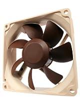 Noctua NF-R8 PWM Cooling Fan