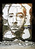 VHILS/ Alexandre Farto Selected Works 2005-2010 [ペーパーバック]