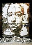 VHILS/ Alexandre Farto Selected Works 2005-2010 [ペーパーバック]
