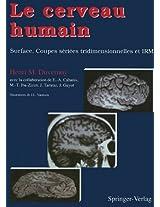 Le cerveau humain: Surface, coupes sériées tridimensionnelles et IRM