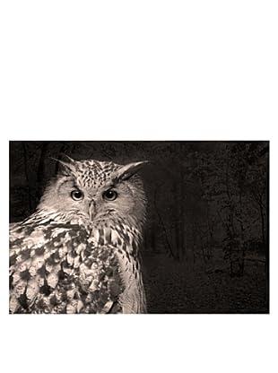 Art Addiction Owl 24