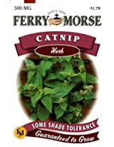 Ferry-Morse Herb Seeds 1258 Catnip 500 Milligram Packet (Discontinued by Manufacturer)