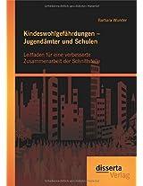 Kindeswohlgefahrdungen - Jugendamter Und Schulen: Leitfaden Fur Eine Verbesserte Zusammenarbeit Der Schnittstelle