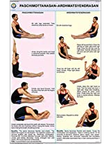 Paschimottanasan and Ardh Matsyendrasan Yoga Chart (50x75cm)