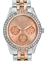 Titan Chronograph Gold Dial Women's Watch - 9968KM01J