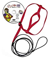 The AVIATOR Bird Harness and Leash: XX-Large Red