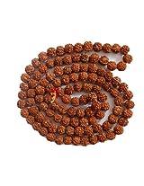 5- Mukhi Rudraksha Mala ( 108+1 beads )