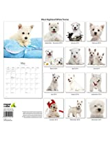 West Highland White 2014 Wall Calendar