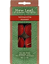 Candle-lite New Leaf  8-Pack Tea Lights with Soy Wax, Terracotta Sunset