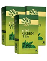 LaPlant Mint Green Tea - 75 Tea Bags (Pack of 3)
