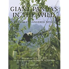 Giant Pandas in the Wild: Saving an Endangered Species