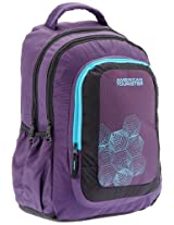 American Tourister Code Purple and Black Casual Backpack (R51 (0) 51 004)