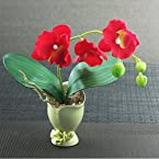 Artificial Red Flower With Ceramic Pot from Simply Chic
