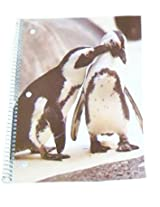 Staples Wide Ruled Animal Spiral Notebook ~ Penguin Love Pecks (70 Sheets, 140 Pages)