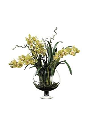 Allstate Floral Cymbidium Orchid in Glass Vase, Green