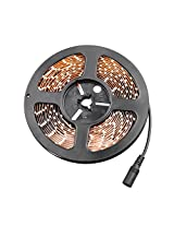 Daksh Creations Water Proof Smd Strip Led Light In Warm With Output Driver And Power Cord, White