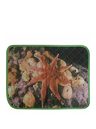 National Geographic Mantel Individual Estrella (Multicolor)