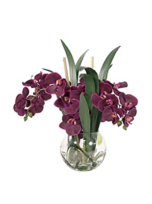 Creative Displays Purple Orchid in Round Glass (Purple)