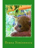 Gandacel: Volume 1 (Aventurile Lui Gandacel)