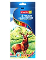 Camlin - Premium Colour Pencils