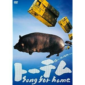 トーテム Song for homeの画像