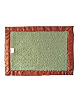 Patricia Ann Designs Chenille with Flat Binding Satin Travel Silkie, Green Apple, Brown