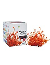 Magical Crystal Growing Kit Ruby Red W T Samuel Treasure