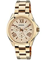 Fossil Analog Multi-Color Unisex Watch - AM4511