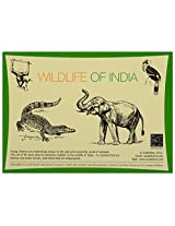 Sutradhar Wildlife of India - Flash cards (13 x 18 x 2 cm)