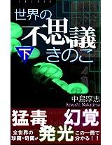 Sekai no Fusigi Kinoko-2