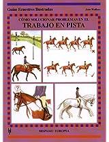Como Solucionar Problemas En El Trabajo En Pista / Solving Flatwork Problems (Guias Ecuestres Illustradas / Equestrian Illustrated Guides)