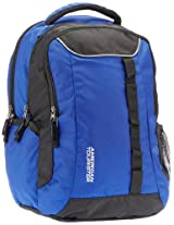 American Tourister Buzz Nylon Blue and Black Laptop Backpack