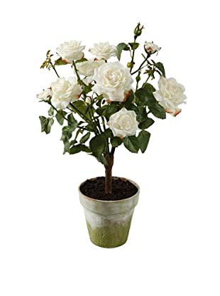 Winward Potted Faux Garden Rose, Champagne