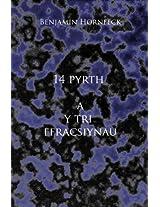 14 pyrth a y tri ffracsiynau (Welsh Edition)
