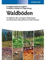 Waldböden: Ein Bildatlas der Wichtigsten Bodentypen aus sterreich, Deutschland und der Schweiz