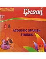 Givson Acoustic Guitar Strings by SG Musical