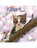 Cats / Kittens 2015 (Mini)