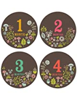 Lucy Darling Shop Baby Girl Stickers Whimsical Woodland Flower Design Month 1 12