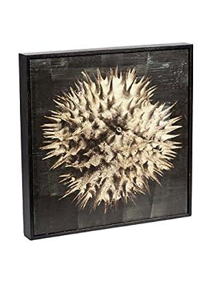 Chris Dunker for Phylum Design Datura #2, Encaustic Photograph